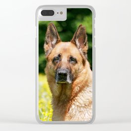 Live, Love, Woof for Summer Love Clear iPhone Case