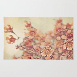 Orange Waxflowers Rug