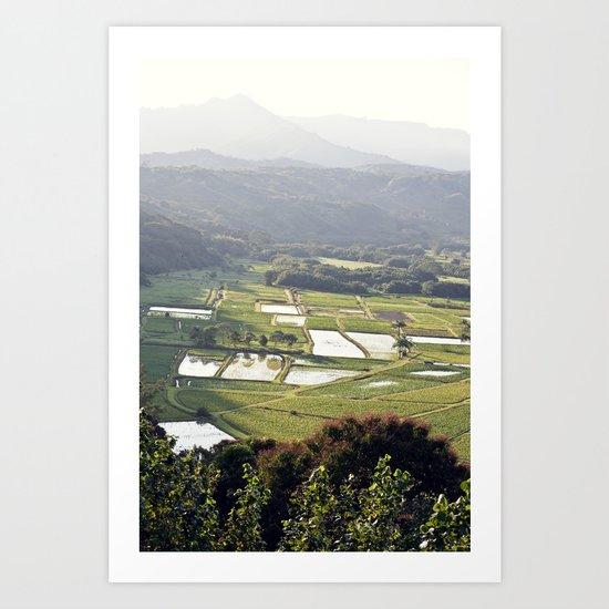 Hawaii Field Art Print