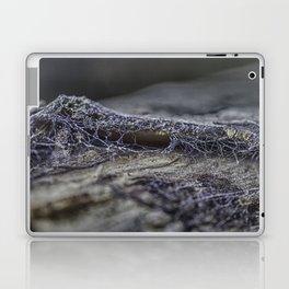 Surprise of nature- spider web Laptop & iPad Skin