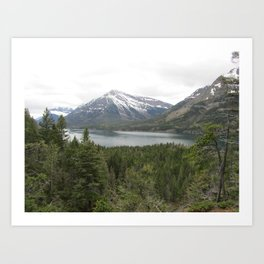 WATERTON5 Art Print