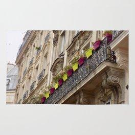 Paris side street downtown flower pots Rug