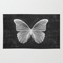 Butterfly in Black Rug