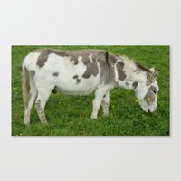 donkey Canvas Prints featuring Donkey by Imager