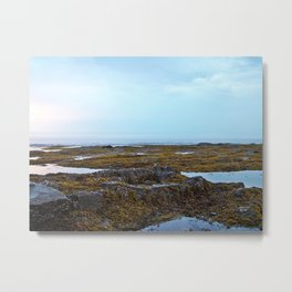 Tidal Shelf and the Fog Metal Print