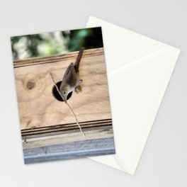 The House Wren. © J. Montague. Stationery Cards