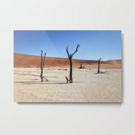 DeadVlei Barren Landscape Metal Print