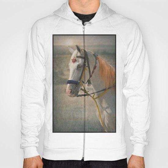 Desert horse Hoody