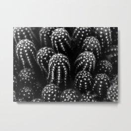 Cactus nature XIII Metal Print