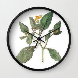 Impatiens Capensis Wall Clock