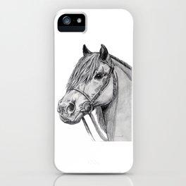 Shetland Pony Portrait iPhone Case