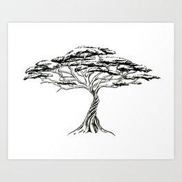 Whistling Thorn , Zen Bonsai African Tree Art Print