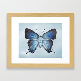 Butterfly Moth Illustration | Watercolour Painting | Insect | Blue | Nursery | Baby Room Framed Art Print