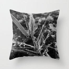 Exmoor X Throw Pillow