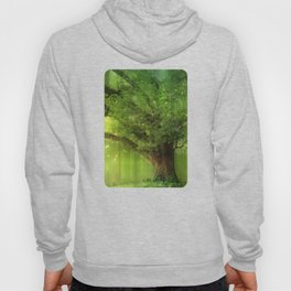 Family Tree Hoody