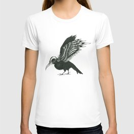 ∅. T-shirt