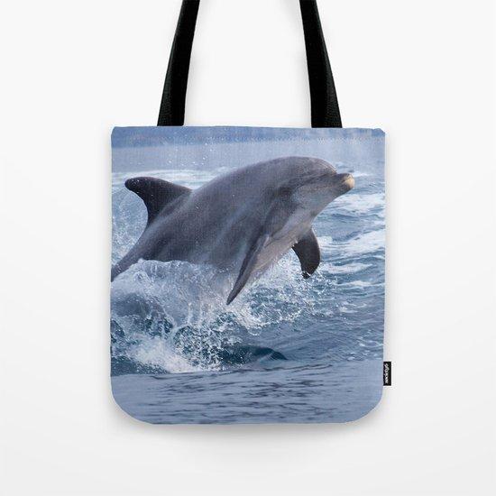Bottenose dolphin by chloeyzoard