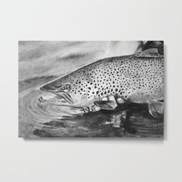 Marrón para un distraído (Brown Trout for a distracted) Metal Print