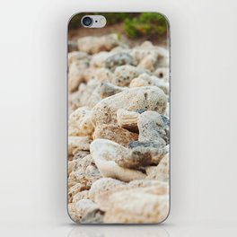 Coral Wall iPhone Skin