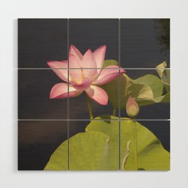 Pink Lotus by Teresa Thompson Wood Wall Art