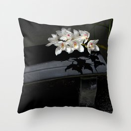 Dark Shadows Throw Pillow