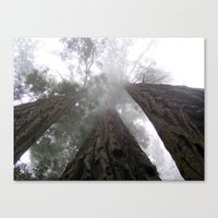 giants Canvas Prints featuring Giants by CharlieX