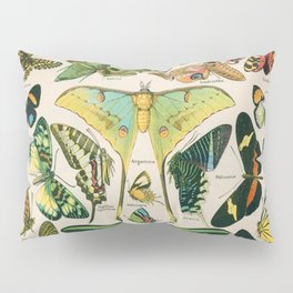 Vintage Butterfly Print Pillow Sham