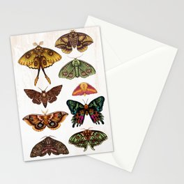 Moth Wings III Stationery Cards