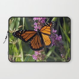 Monarch Splendor Laptop Sleeve