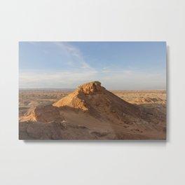 Vertical Desert II Metal Print