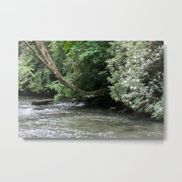 Streams of Living Water Metal Print