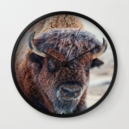 American Bison Wall Clock