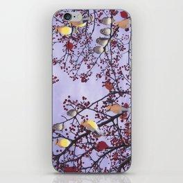 cedar waxwings and berries iPhone Skin