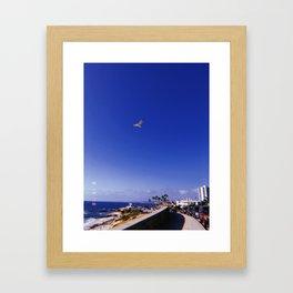 Bird and Beach in La Jolla Framed Art Print