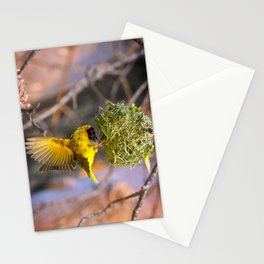 Weaver in Likoma Stationery Cards