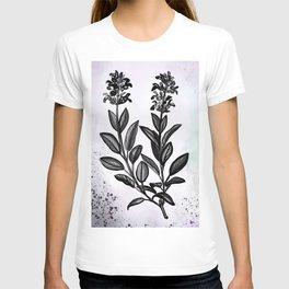 Sage Botanical Illustration T-shirt