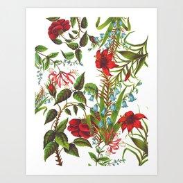 Ruby & Cerulean Floral Art Print