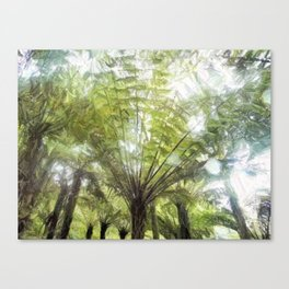 Fern tree, NZ Canvas Print