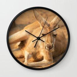 Red kangaroo Wall Clock