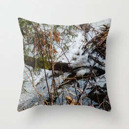 The beach in the winter Throw Pillow