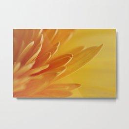 Macro photograph of Yellow Gerbera Daisy Petals II Metal Print