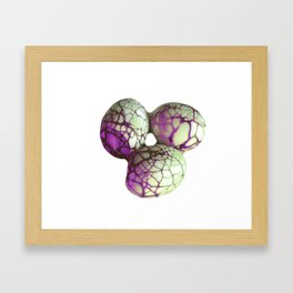 Marmored Eggs Framed Art Print