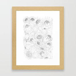 King and Queen Proteas Framed Art Print