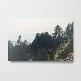 Foliage 1 Metal Print