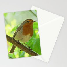 Robin in the bushes Stationery Cards