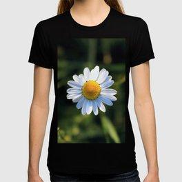 Chamomile flower T-shirt