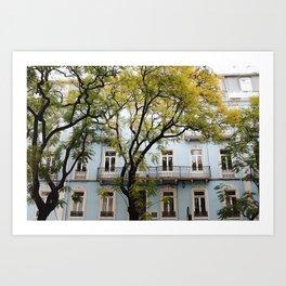 Behind Branches Art Print