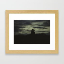 Sunset Bird 2 Framed Art Print