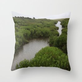 Rain on Stream No.2 Throw Pillow