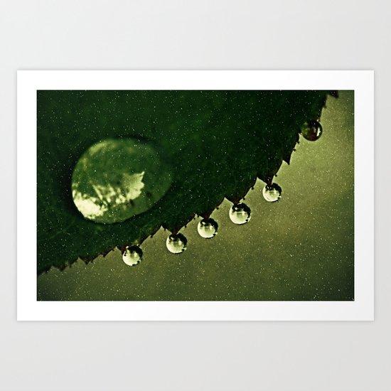 Leaf Drops Art Print